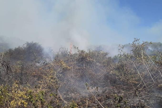 incendio_pantanal