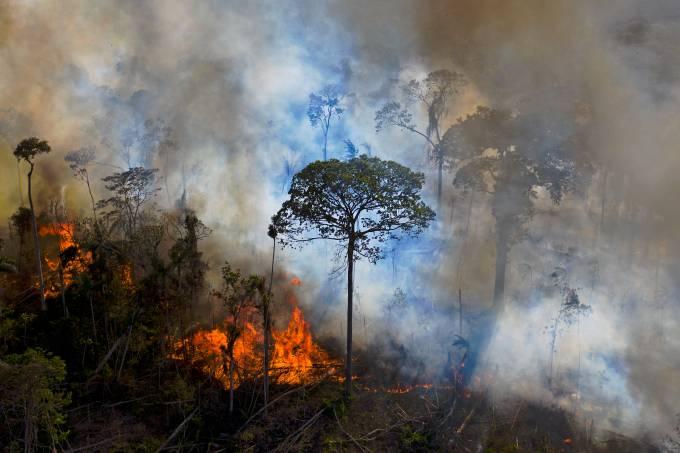 FILES-BRAZIL-ENVIRONMENT-FIRE-GREEN CONVERSION