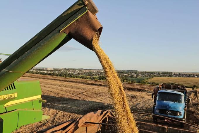 Colheita de soja avanÁa no PR