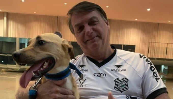 bolsonaro – cachorro