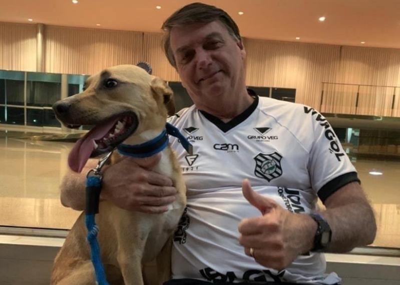 Bolsonaro: vacina obrigatória só para o cachorro