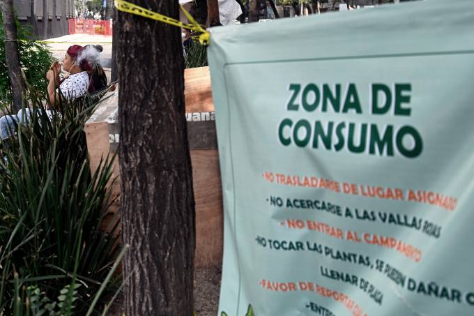 MEXICO-CANNABIS-LEGALIZATION-CAMP