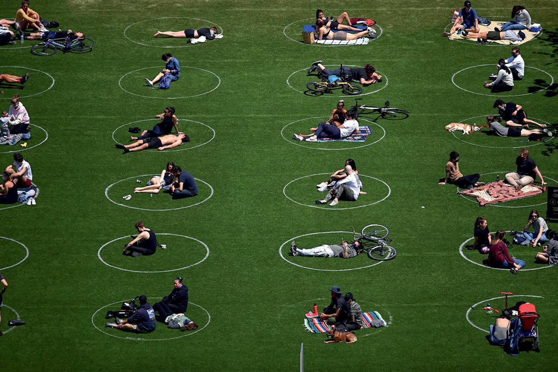 NO PARQUE - Cada família em seu próprio círculo: demarcação -