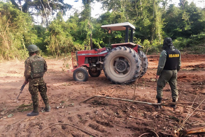 FLAGRANTE -Operação do Ibama: tratores e motosserras no meio da floresta -