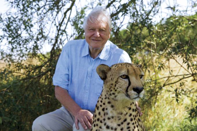 DAVID-ATTENBOROUGH-852.jpg