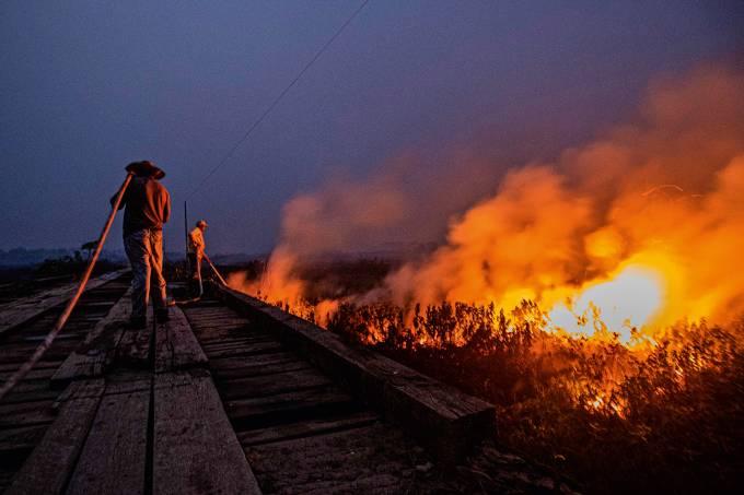 Los incendios en el Pantanal alcanzan nivel rÈcord en Brasil