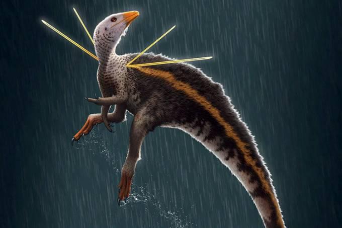 https://www.nationalgeographicbrasil.com/ciencia/2021/01/fossil-roubado-do-brasil-revela-dinossauro-unico-mas-gera-criticas