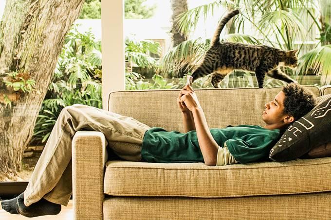 Teenage boy (17-19) lying on sofa, using mobile phone, cat on sofa