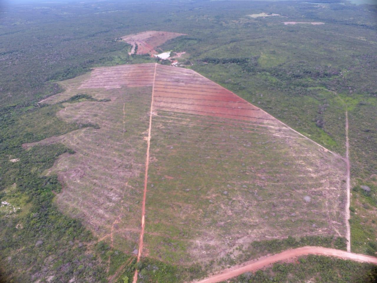 Operação contra desmatamento irregular na região APA de Pouso Alto, no município de Cavalcante.