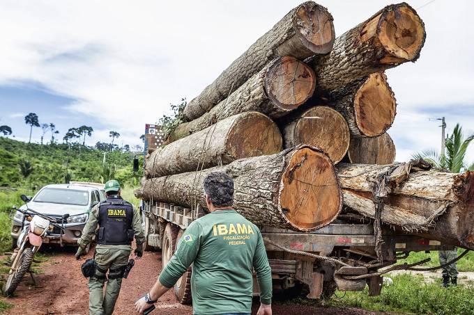 AMAZONIA-DESMATAMENTO-MADEIRA-CACHOEIRA-SECA-PARA-2020-12-(4).jpg