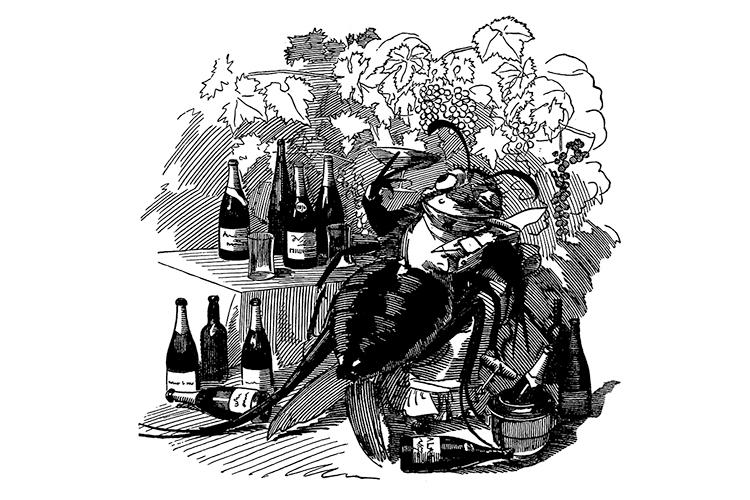 CHARGE DE 1880 -Filoxera: a terrível praga arruinou as vinhas -