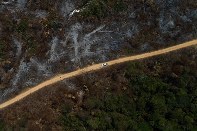 Fire In The Amazon Region In The South Of The State Of Para