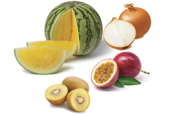 Montagem-Frutas