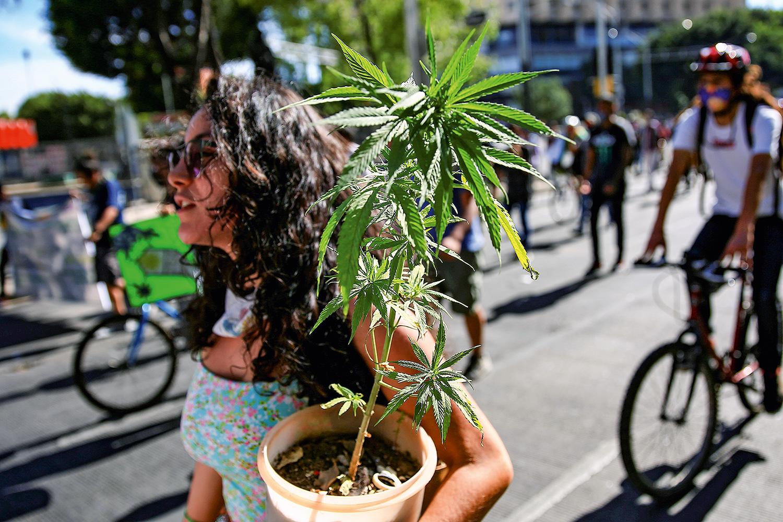 ATIVISMO -Passeata no México: o país latino-americano aprovou lei de liberação do uso recreativo da maconha -