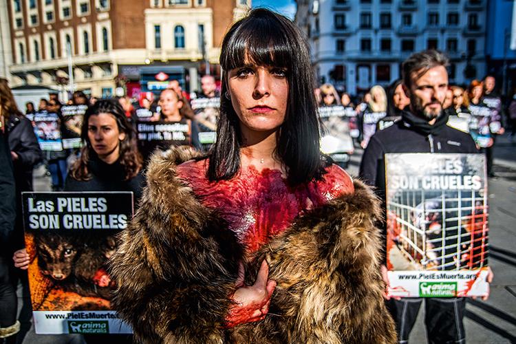 ATIVISMO - Em Madri: protestos contra grifes que usam peles são ruidosos -