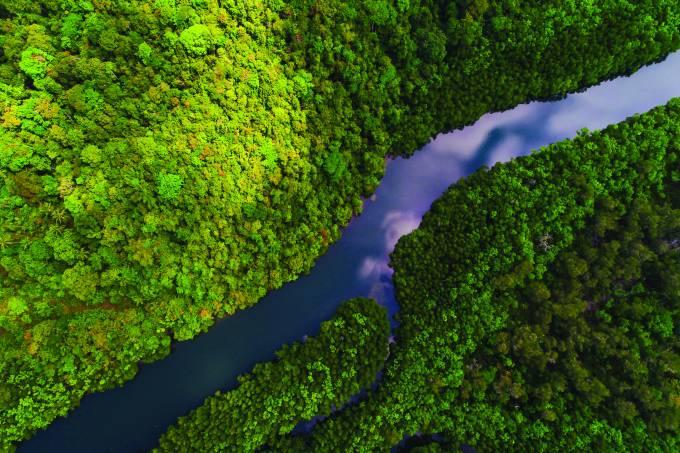 Rio na Amazônia