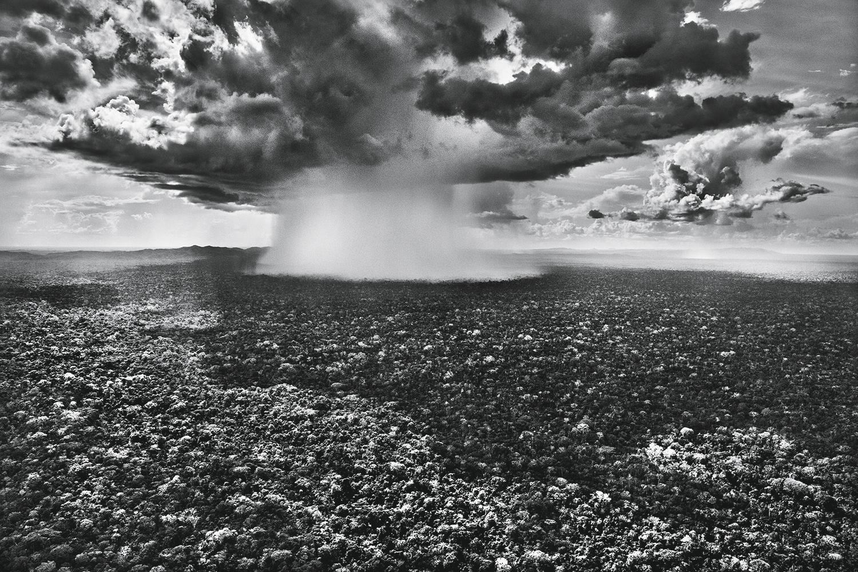 RIOS AÉREOS -Explosão de chuva no Parque Nacional da Serra do Divisor (AC): imensidão espetacular -