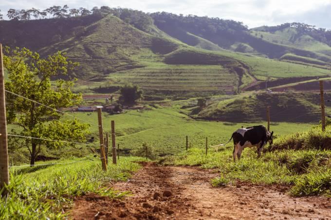 Região de Mariana, em Minas Gerais