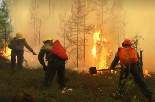 Bombeiros tentam conter incêndio na Rússia