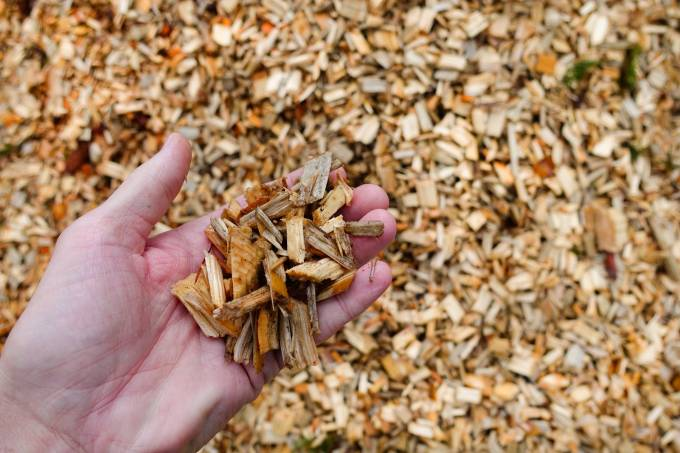 Close up of a hand holding wood chips