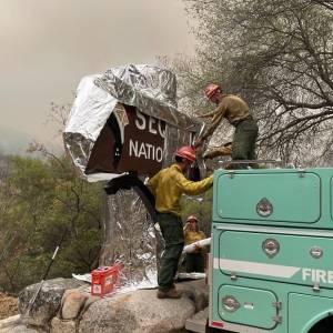 Bombeiros 'envelopam' árvores e placas do Parque Nacional das Sequoias, na Califórnia, para conter incêndio devastador