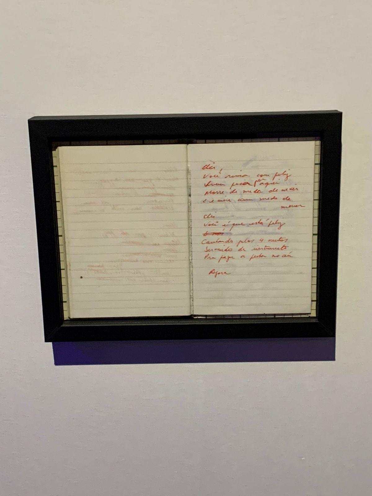 Poema inédito escrito por Rita Lee em homenagem à Elis Regina