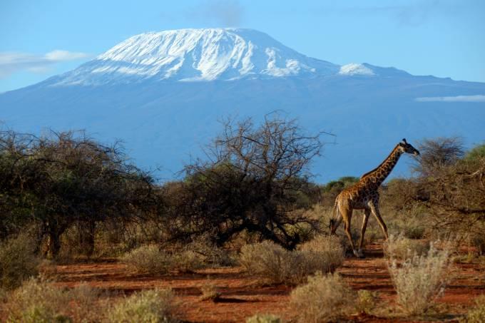 O Monte Kilimanjaro visto do Parque Nacional Amboseli, no Quênia